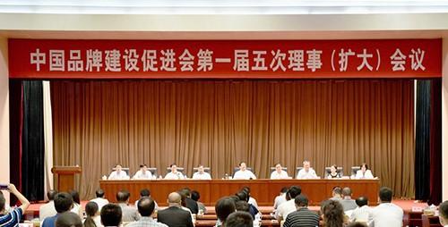 王彦明深入学习中国品牌建设促进会会议精神